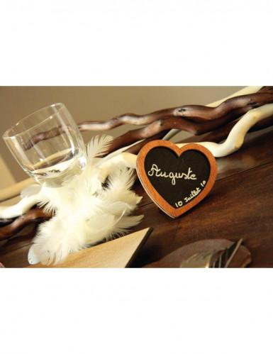 Guirlande de plumes blanche 1 m