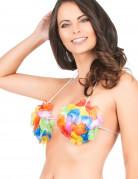 Vous aimerez aussi : Soutien-gorge Hawaï coquillage adulte