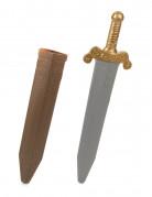 Vous aimerez aussi : Épée gladiateur romain en plastique