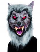 Masque loup garou avec fourrure adulte