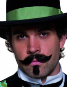 Moustache et barbichette noire adulte