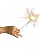 Vous aimerez aussi : 10 Cierges magiques argentés 16 cm