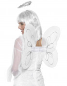 Ailes blanches ange adulte