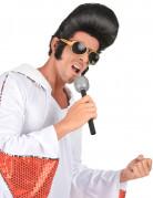 Vous aimerez aussi : Perruque noire rock homme