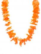 Vous aimerez aussi : Collier hawaï orange