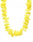 Vous aimerez aussi : Collier hawaï jaune