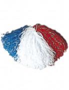 Pompon supporter France