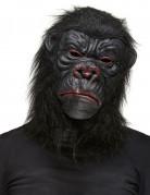 Masque gorille noir adulte