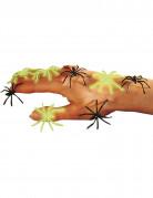 Vous aimerez aussi : Fausses araignées noires et phosphorescentes Halloween