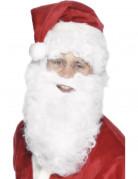 Vous aimerez aussi : Barbe blanche 28 cm adulte Noël