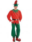 Set accessoires elfe adulte
