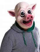 Masque Cochon joyeux Adulte