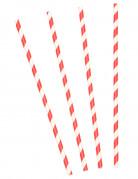 10 Pailles en carton à rayures rouges et blanches