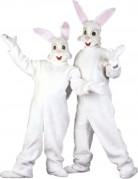 Déguisement mascotte lapin adulte