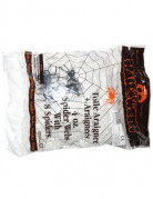 Décoration toile araignées blanche avec 4 araignées 113 g Halloween