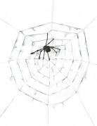 Vous aimerez aussi : Toile d'araignée géante avec araignée 2.90m Halloween
