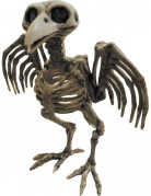 Vous aimerez aussi : Squelette de corbeau Halloween