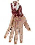 Vous aimerez aussi : Main découpée 25 cm Halloween