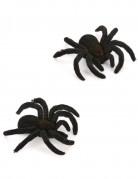 2 Araignées 10 cm Halloween
