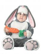 Vous aimerez aussi : Déguisement lapin pour bébé - Premium
