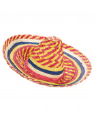 Sombrero mexicain multicolore adulte