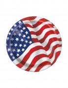 Vous aimerez aussi : 8 Petites assiettes en carton drapeau USA 17 cm
