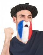 Vous aimerez aussi : Barbe supporter tricolore France adulte