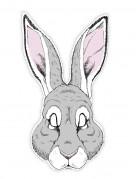 Vous aimerez aussi : Masque papier lapin