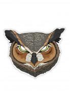 Vous aimerez aussi : Masque papier hibou