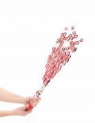 Vous aimerez aussi : Canon à confettis anniversaire 18 ans