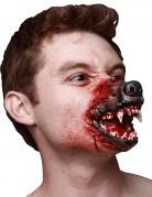 Museau loup garou adulte Halloween