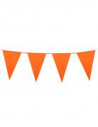 Vous aimerez aussi : Guirlande à fanions oranges 10m