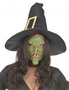 Vous aimerez aussi : Demi masque latex nez et menton sorcière verte adulte