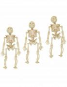 Vous aimerez aussi : 3 Décorations à suspendre squelettes
