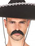Vous aimerez aussi : Moustache noire adulte