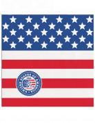 Vous aimerez aussi : 20 Petites serviettes en papier USA