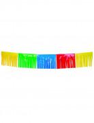 Vous aimerez aussi : Guirlande à franges multicolores 10 m