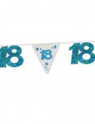 Vous aimerez aussi : Guirlande bleue à paillettes 18 ans 6 m
