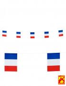 Guirlande drapeaux France 15 X 20 cm 6m