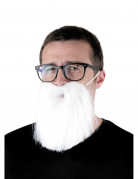 Vous aimerez aussi : Barbe hipster blanche adulte