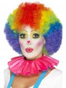 Collerette clown rose adulte