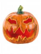 Vous aimerez aussi : Décoration lumineuse citrouille Halloween 16 cm