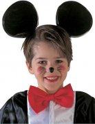 Vous aimerez aussi : Serre-tête noir oreilles de souris enfant