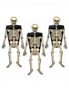 Vous aimerez aussi : Décoration murale lot 3 squelettes noirs et blancs 5,1x15,9cm