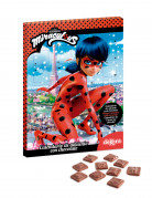 Calendrier de l'avent Ladybug™