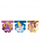 Vous aimerez aussi : Guirlande fanions Princesses Disney Dreaming ™