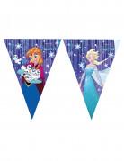 Guirlande fanions La Reine des Neiges Frozen ™