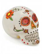 Vous aimerez aussi : Décoration crâne coloré Dia de los muertos