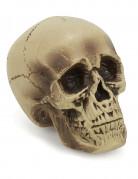 Décoration crâne plastique 18 cm
