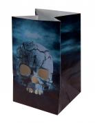 Vous aimerez aussi : 6 Lanternes en papier Nuit d'Horreur Halloween 6 x 10 cm